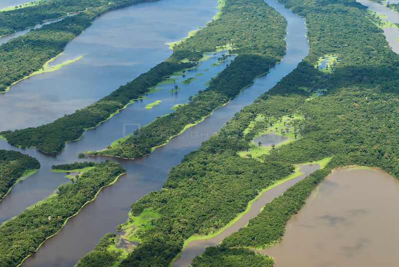 Aerial view of Igapo flooded rainforest, River Negro, Anavilhanas Ecological Station, Brazil, January, 2010.