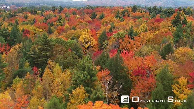 Low flight over brilliant fall foliage