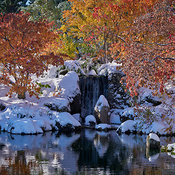 Nikka_Yuko_Fall_snow_DSC6447