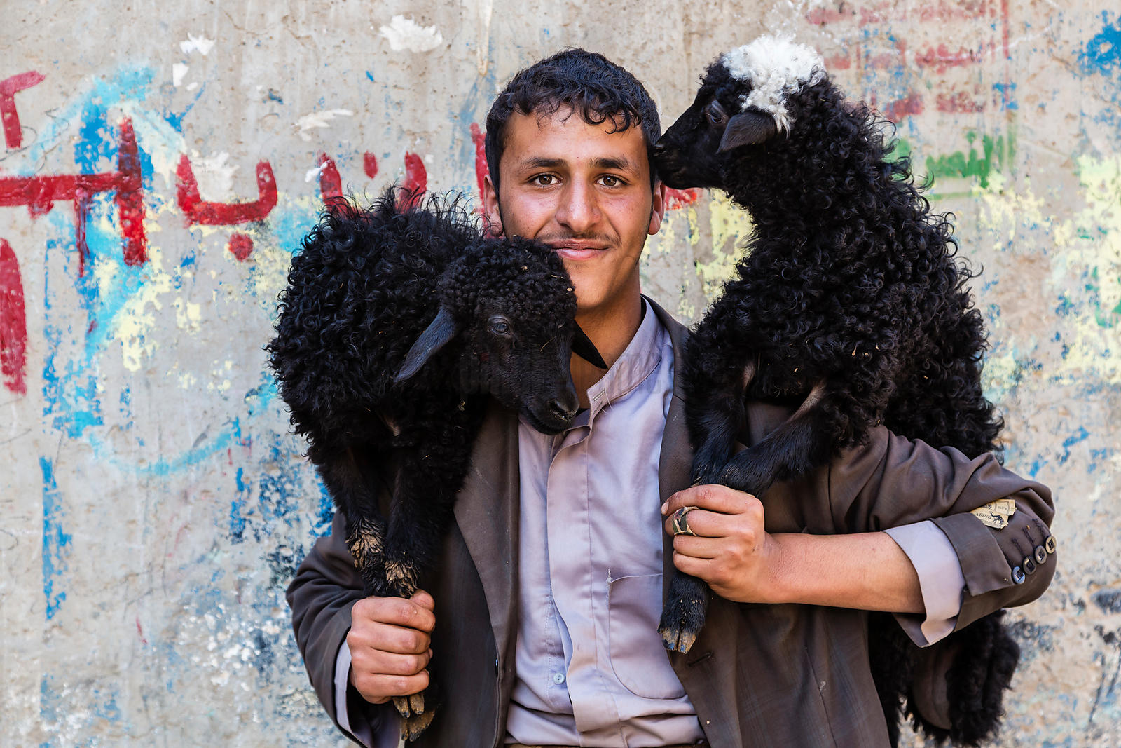 Yemeni Man Carrying Sheep
