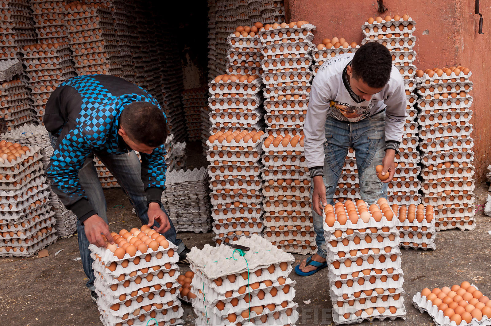 Egg sellers marrakech