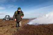 Gamekeeper starting a fire on grouse moor in spring. Yorkshire Dales, UK.