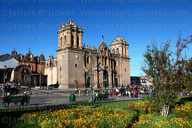 Cathedral, flowers and cantuta bush (Cantua buxifolia, R) in Plaza de Armas, Cusco, Peru