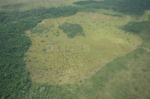 Aerial view of vestiges on the land of ancient agricultural works of primitive people, Beni floodplain, Beni Department, Bolivia