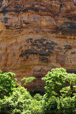 Trees and limestone rock formations in Torotoro Canyon, Torotoro National Park, Bolivia