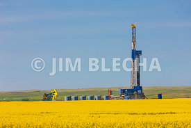 Bakken Multi-Well Pad and Canola