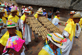 Musicians playing Bajon Grande during main procession, San Ignacio de Moxos, Bolivia
