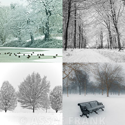 Quartet of Winter