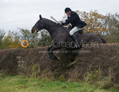 Nick Townsend jumping a big Cottesmore hedge