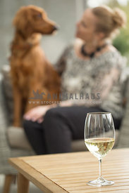 Blonde woman sitting looking at Irish Setter mix on outdoor chair with white wine glass on table