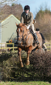 A young follower jumping the first hedge