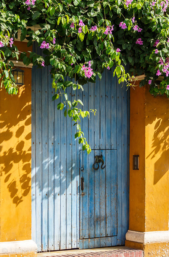 Colourful doorway surrounded by pink flowers in Cartagena, Colombia, South America