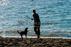 A woman prepares to throw a stick for her wet dog
