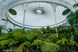 The Kibble Palace greenhouse, Glasgow.