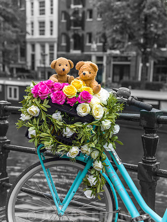 Bicycle with bunch of roses and teddy bears on bridge, Amsterdam