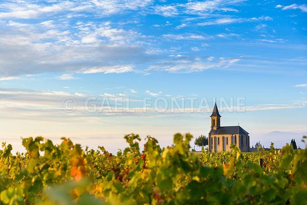 Vignes et madonne de Saint Laurent d'Oingt au lever du jour, Beaujolais