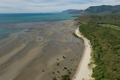 Aerial view of mangrove forest and beach near Cairns, Queensland, Australia