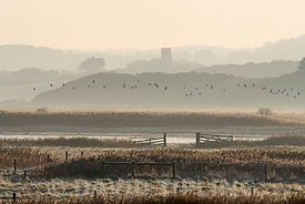 Cley Marshes NWT Reserve with Salthouse church in distance Cley Norfolk winter