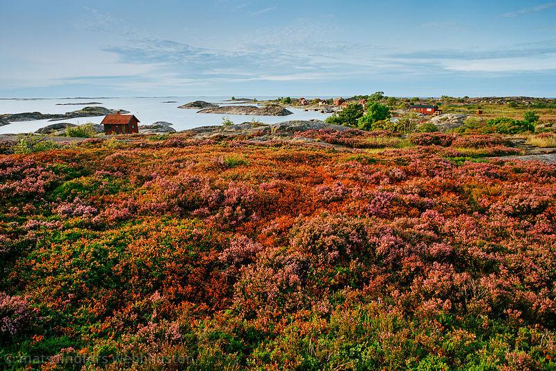 Ut-Fredel Stockholms skärgård/ Archipelago