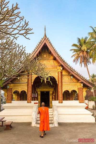 Buddhist monk in front of temple, Luang Prabang, Laos