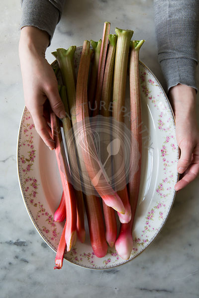 Rhubarb on a vintage plate, held by a womand hands