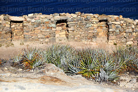 Bromeliad plants and niches in Inca wall, Chincana ruins, Sun Island, Lake Titicaca, Bolivia