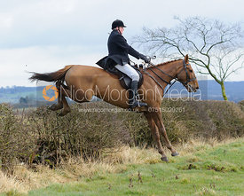 Nicholas Townsend jumping a hedge above Wilson's covert