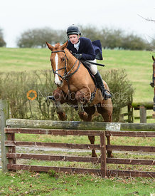 Meghan Healy Jumping a hunt jump by Gossages's. The Cottesmore Hunt at Bleak House 18/12