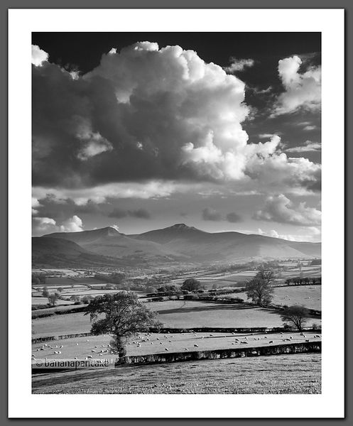 Brecon Spring (BP3584BW)
