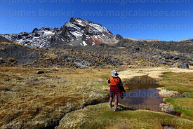 Hiking through bofedales near Pampalarama, Cordillera Real, Bolivia