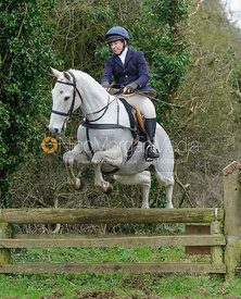 Clare Bell jumping a hunt jump near Knossington Spinney