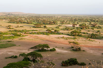 Aerial landscape of Amboseli National Park, Kenya, January 2015.
