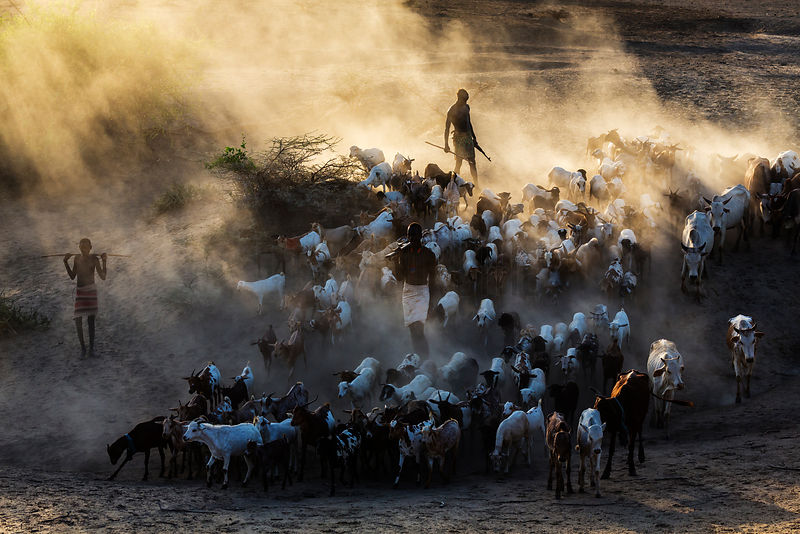 Herders from the Kara Tribe with their Goats and Cattle