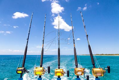 Row of Deep Sea Fishing Rods on Boat