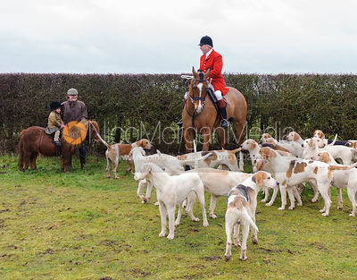 The Cottesmore Hunt at Sawgate Farm 30/12