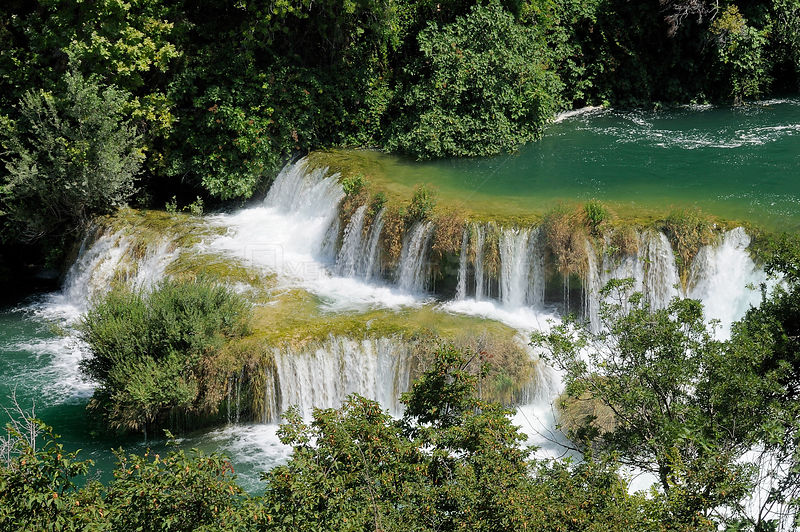 Krka river flowing over a series of travertine dams or barriers at Skradinski buk waterfalls, with densely forested surrounds...