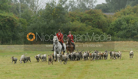 The Cottesmore hounds with Huntsman Andrew Osborne and Whipper-In Robert Medcalf