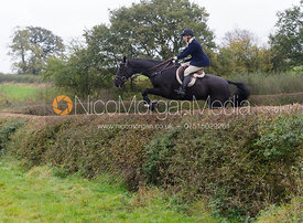 Katie Barber jumping a big hedge - Quorn at Barrowcliffe 1-11-13