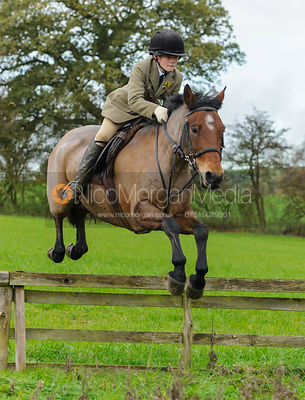 Ned Forryan - The Cottesmore Hunt at Tilton on the Hill, 9-11-13