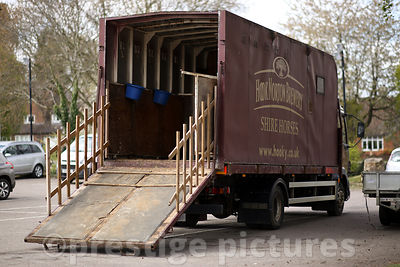 Horsebox for the Hook Norton Brewery Shire Horses