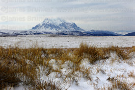 Altiplano grassland after fresh winter snowfall and Mt Illimani, Cordillera Real, Bolivia