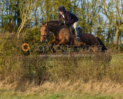 Jess Butler jumping a hedge on line 3