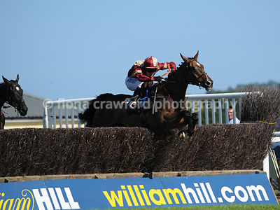 3.55pm 31st August Handicap Steeple Chase with winner The Disengager
