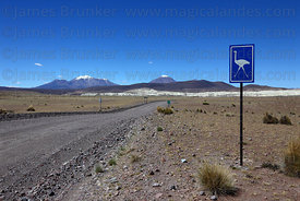 Watch out for for rheas sign next to A-95 road, Las Vicuñas National Reserve , Region XV , Chile