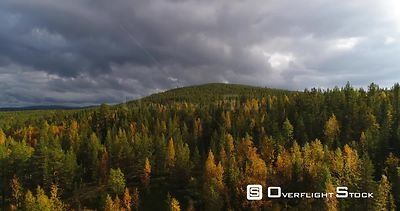 Autumn Color Forrest, Aerial Rising View Over Colorful Autumn Trees, Towards a Tunturi Fjeld Mountain, on a Sunny and Rainy F...