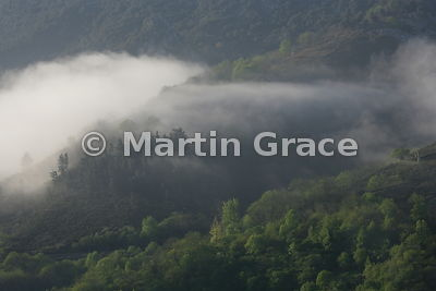Early morning mist, Picos de Europa, Spain
