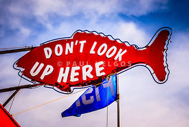 Don't Look Up Here Crab Cooker Sign Photo