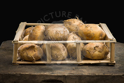 Young ripe potatoes in a wooden crate