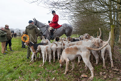 The Quorn Hunt at Seldom Seen Farm 1/3 photos