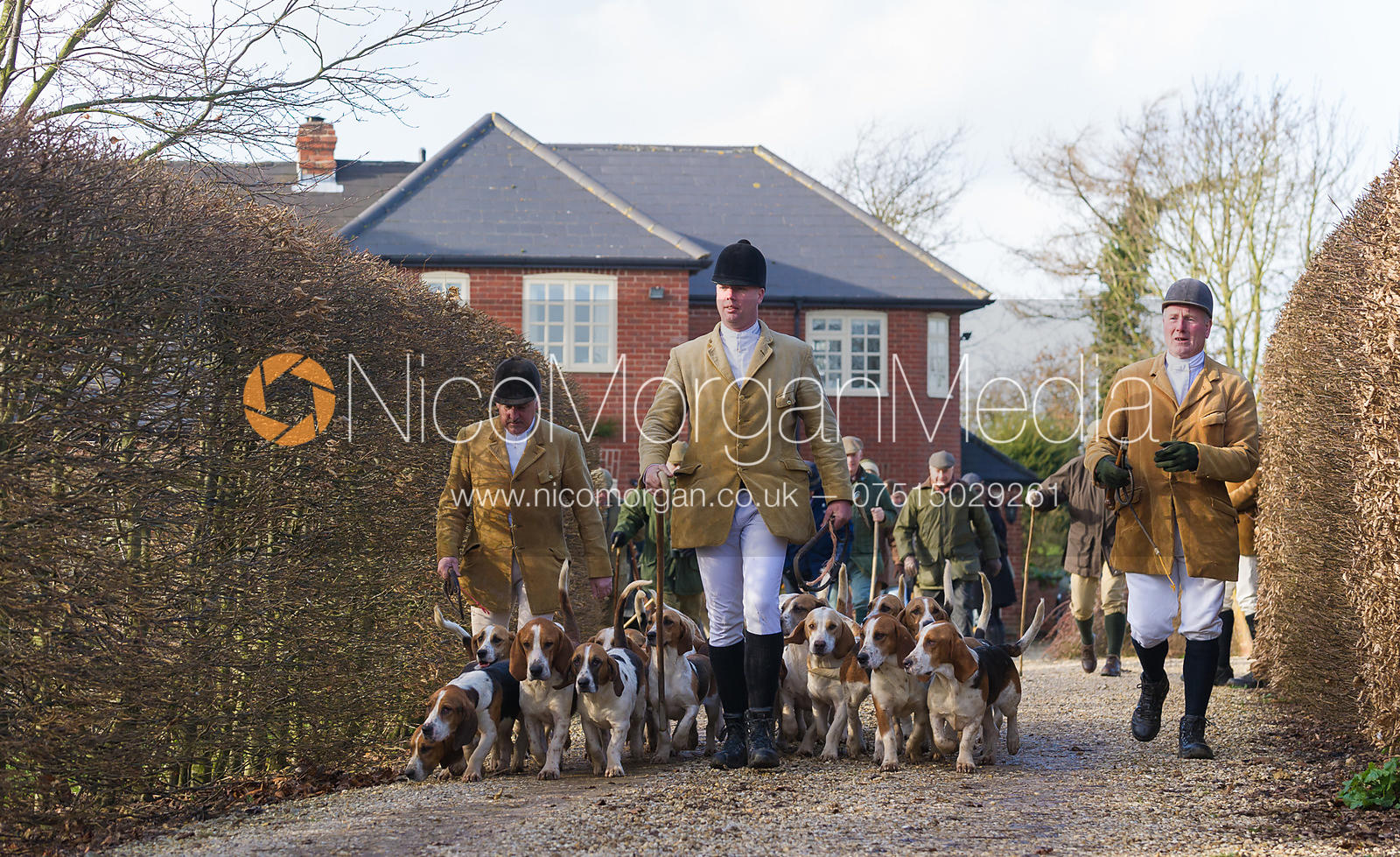 The Westerby Bassets leave Hill Top Farm